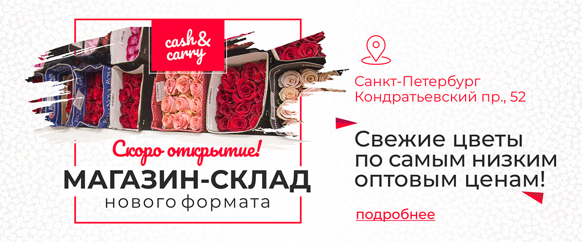Где купить цветы по оптовым ценам спб